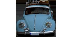 Bug-Super Beetle